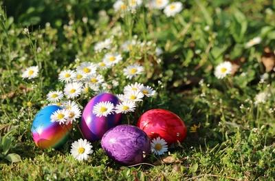 Die SPD wünscht frohe Ostern!